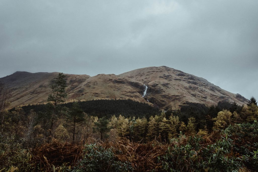 Glen Etive forest and mountain